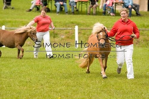 (c)SimoneHomberg_Ponyfest_2013_0164