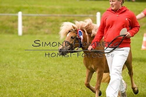 (c)SimoneHomberg_Ponyfest_2013_0165
