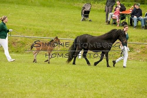 (c)SimoneHomberg_Ponyfest_2013_0166