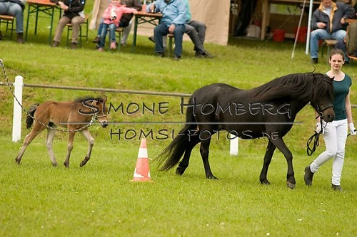 (c)SimoneHomberg_Ponyfest_2013_0167