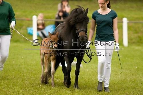 (c)SimoneHomberg_Ponyfest_2013_0168