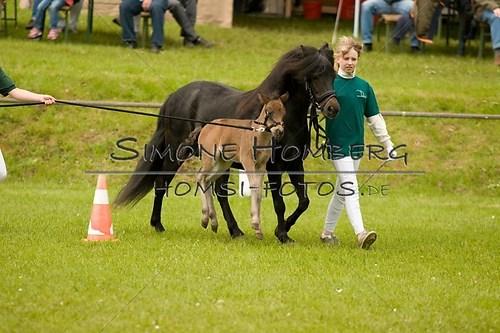 (c)SimoneHomberg_Ponyfest_2013_0169