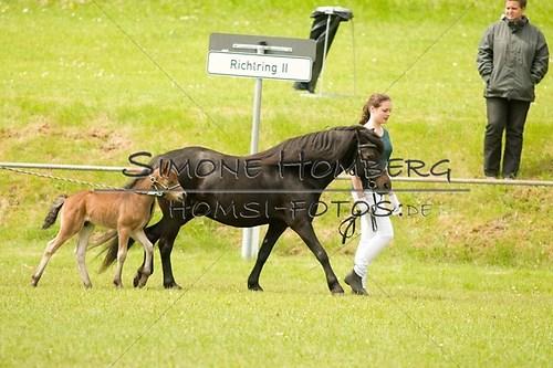 (c)SimoneHomberg_Ponyfest_2013_0172