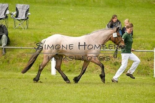 (c)SimoneHomberg_Ponyfest_2013_0173