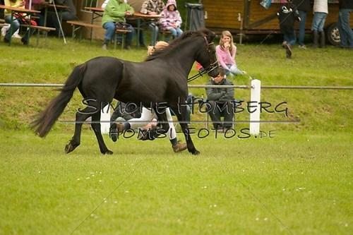 (c)SimoneHomberg_Ponyfest_2013_0197