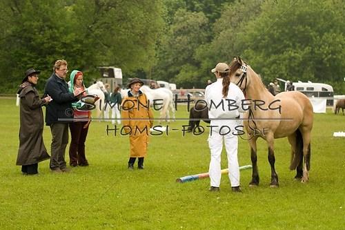 (c)SimoneHomberg_Ponyfest_2013_0217