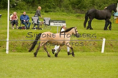 (c)SimoneHomberg_Ponyfest_2013_0218