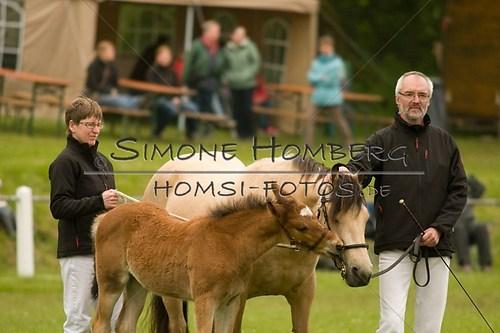 (c)SimoneHomberg_Ponyfest_2013_0459