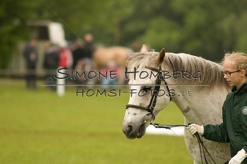 (c)SimoneHomberg_Ponyfest_2013_0467