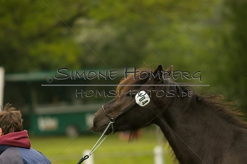 (c)SimoneHomberg_Ponyfest_2013_0469