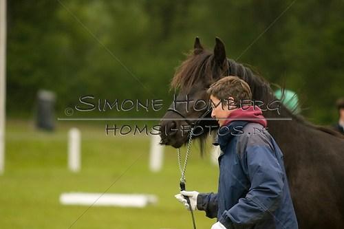 (c)SimoneHomberg_Ponyfest_2013_0471