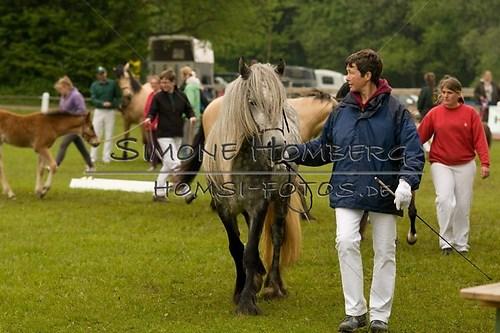 (c)SimoneHomberg_Ponyfest_2013_0481