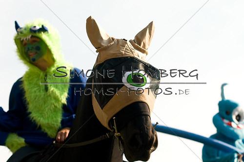 (c)SimoneHomberg_Ponyfest_Sa_20150606_0450