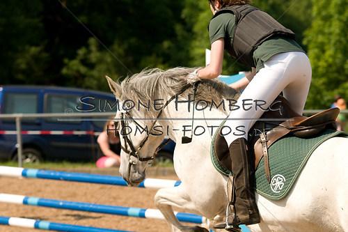 (c)SimoneHomberg_Ponyfest_Sa_20150606_0350
