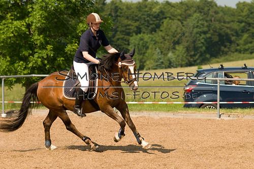 (c)SimoneHomberg_Ponyfest_Sa_20150606_0375