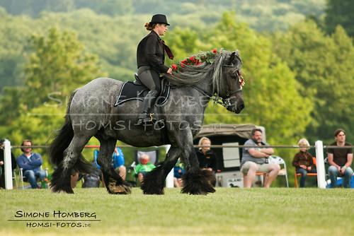 (c)SimoneHomberg_Ponyfest_Schauprogramm_20150606_0160