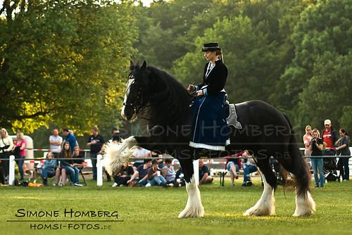 (c)SimoneHomberg_Ponyfest_Schauprogramm_20150606_0522