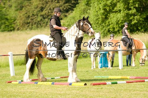 (c)SimoneHomberg_Ponyfest_Sa_20150606_0028