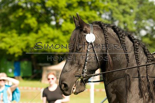 (c)SimoneHomberg_Ponyfest_Sa_20150606_0049