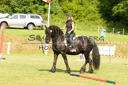 (c)SimoneHomberg_Ponyfest_Sa_20150606_0055