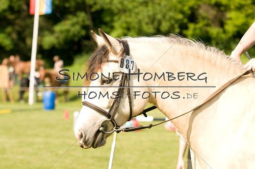 (c)SimoneHomberg_Ponyfest_Sa_20150606_0067