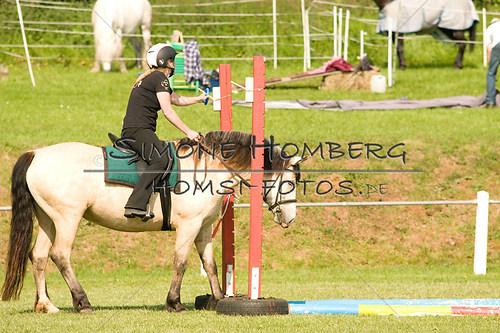 (c)SimoneHomberg_Ponyfest_Sa_20150606_0075