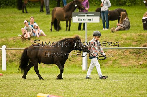 (c)SimoneHomberg_Ponyfest_Sa_20150606_0267