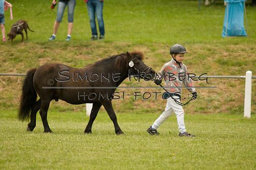 (c)SimoneHomberg_Ponyfest_Sa_20150606_0268