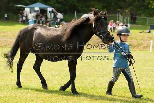 (c)SimoneHomberg_Ponyfest_Sa_20150606_0294