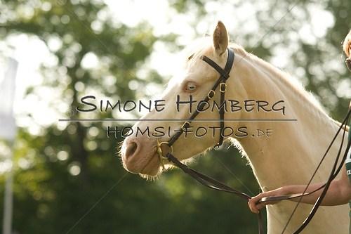 (c)SimoneHomberg_Ponyfest_Schauprogramm_20150606_0013