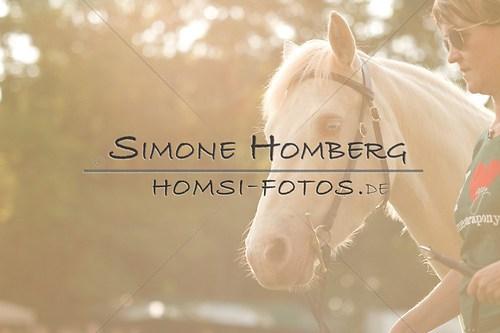 (c)SimoneHomberg_Ponyfest_Schauprogramm_20150606_0014