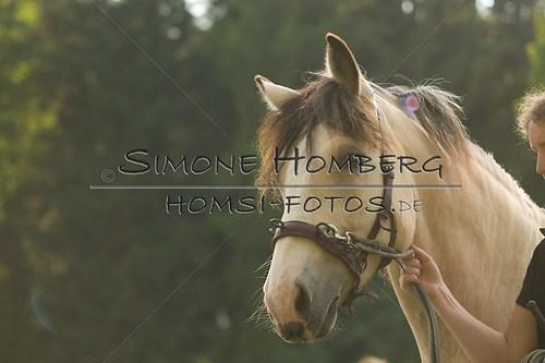 (c)SimoneHomberg_Ponyfest_Schauprogramm_20150606_0015