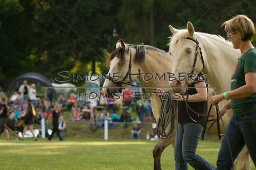 (c)SimoneHomberg_Ponyfest_Schauprogramm_20150606_0017