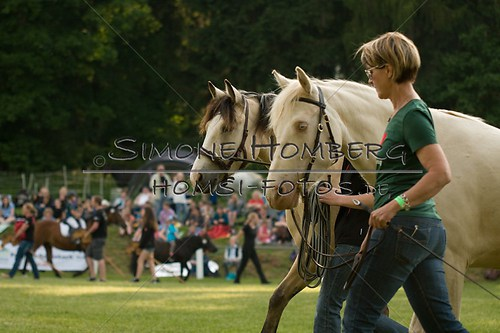 (c)SimoneHomberg_Ponyfest_Schauprogramm_20150606_0018