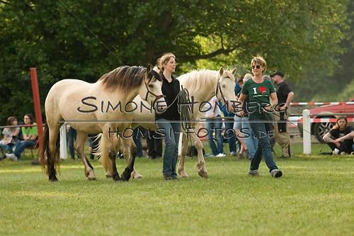 (c)SimoneHomberg_Ponyfest_Schauprogramm_20150606_0027