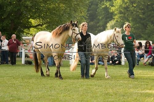 (c)SimoneHomberg_Ponyfest_Schauprogramm_20150606_0028