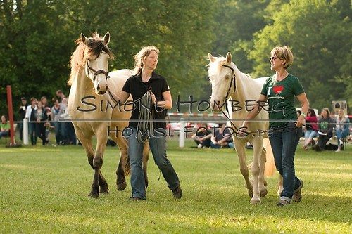 (c)SimoneHomberg_Ponyfest_Schauprogramm_20150606_0029