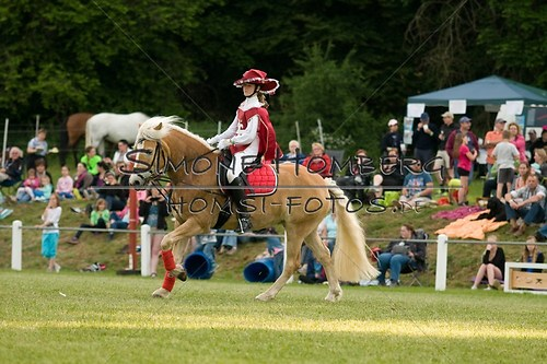 (c)SimoneHomberg_Ponyfest_Schauprogramm_20150606_0084