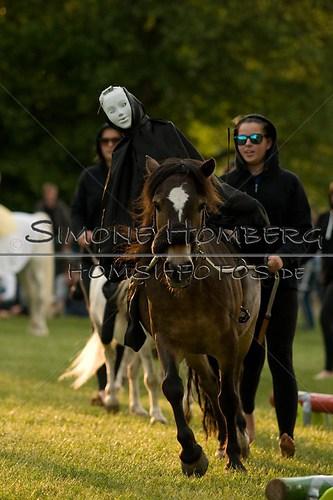 (c)SimoneHomberg_Ponyfest_Schauprogramm_20150606_0444