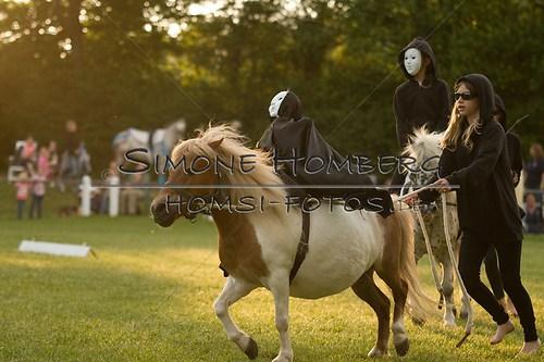 (c)SimoneHomberg_Ponyfest_Schauprogramm_20150606_0446