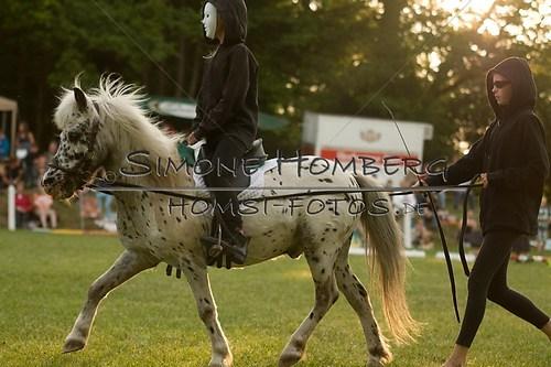 (c)SimoneHomberg_Ponyfest_Schauprogramm_20150606_0448