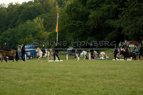 (c)SimoneHomberg_Ponyfest_Schauprogramm_20150606_0450