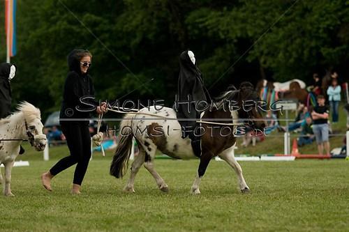 (c)SimoneHomberg_Ponyfest_Schauprogramm_20150606_0454