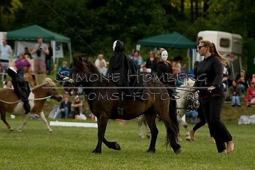 (c)SimoneHomberg_Ponyfest_Schauprogramm_20150606_0456