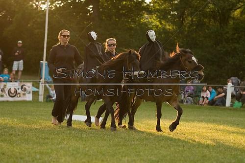 (c)SimoneHomberg_Ponyfest_Schauprogramm_20150606_0459