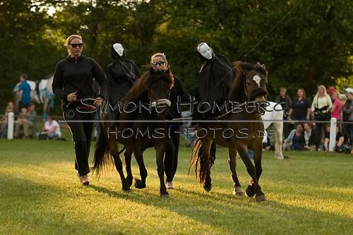 (c)SimoneHomberg_Ponyfest_Schauprogramm_20150606_0461