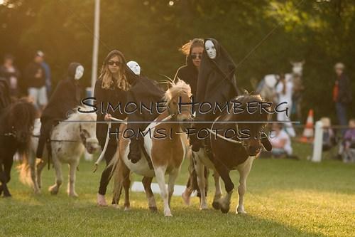 (c)SimoneHomberg_Ponyfest_Schauprogramm_20150606_0464