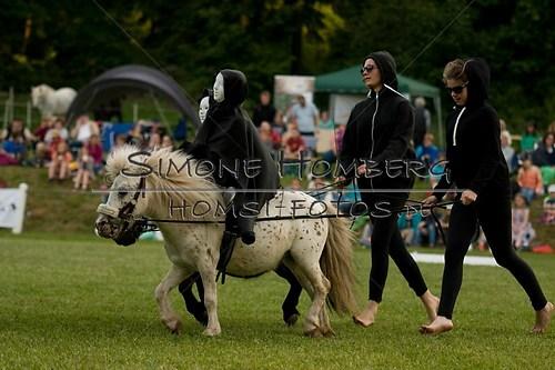 (c)SimoneHomberg_Ponyfest_Schauprogramm_20150606_0467
