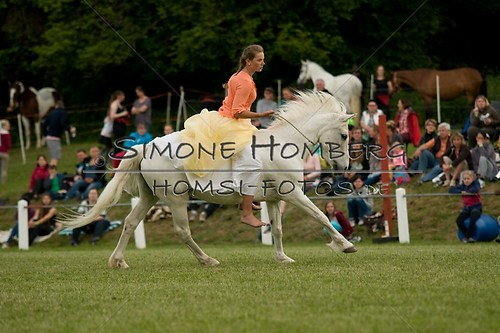 (c)SimoneHomberg_Ponyfest_Schauprogramm_20150606_0483
