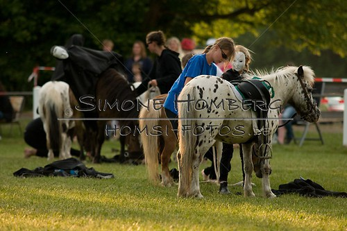 (c)SimoneHomberg_Ponyfest_Schauprogramm_20150606_0486